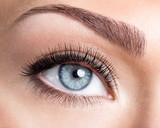 Beauty female eye with curl long false eyelashes - 76748712