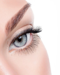 Beauty female eye with curl long false eyelashes