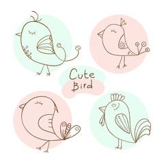 Set of cute bird. Vector illustration