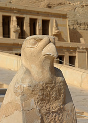 Horus statue at Temple of Hatshepsut in Egypt