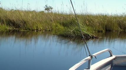 Boat trip okavango delta Botswana Africa