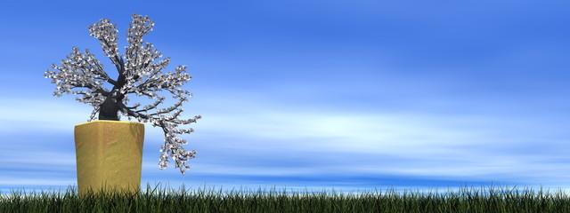 Apricot tree bonsai - 3D render