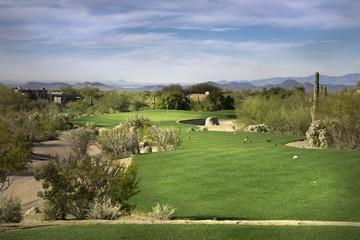 golf course desert landscape, Arizona,USA
