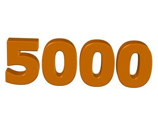 kahve renkli 5000