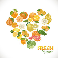 Isolated heart of citrus on a white background