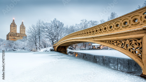 Staande foto Brug Bow Bridge in Central Park, NYC