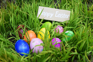 colorful Easter egg on a grass