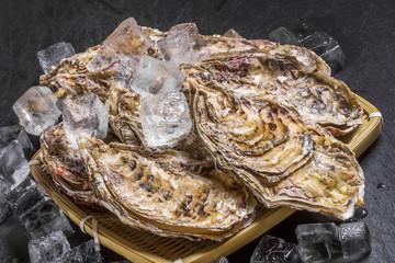 殻付き牡蠣 たべもの