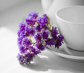 Violet flower beside a white cup