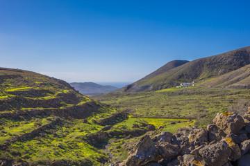 Terraces mountains and sea in  Fuerteventura Las Palmas Canary I