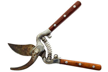 Scissor Branch Cutter