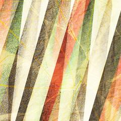 striped leafs