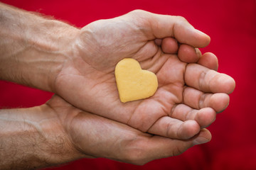 male hands holding biscuit heart