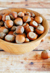 fresh hazelnuts in shell