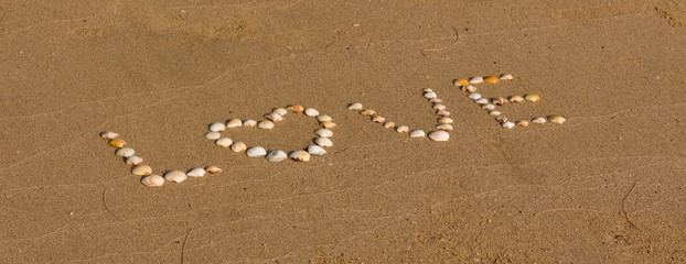 Word love made from sea shells  on sand