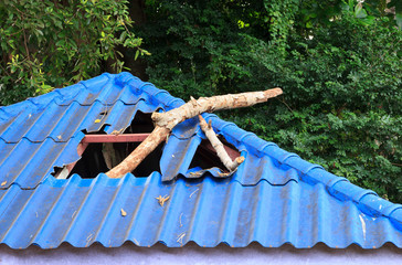Broken roof from branch