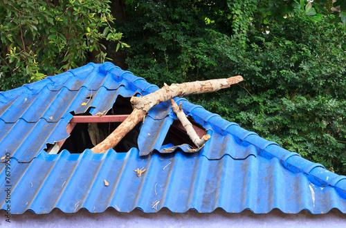 Broken roof from branch - 76799500