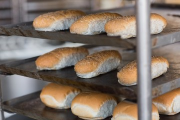 Tray of rolls on rack