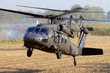 US Army helicopters - 76802538