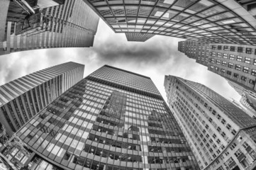 Skyward view of Office Skyscrapers, New York City