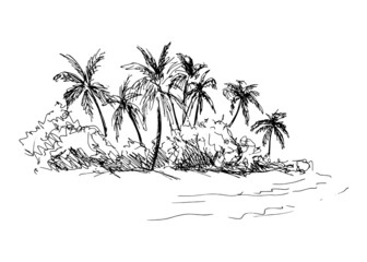 hand sketch coast with palm trees