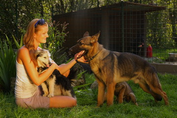A young beautiful womanis stroking a german shepperd dog