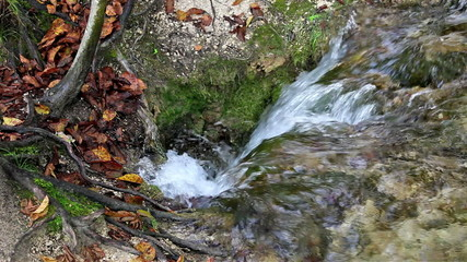 Stream Disappears in Hole in the Ground
