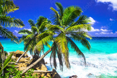tropical scenery - 76812183