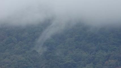 Cloud movement at the top of mountain, Doi Suthep-Pui, Thailand