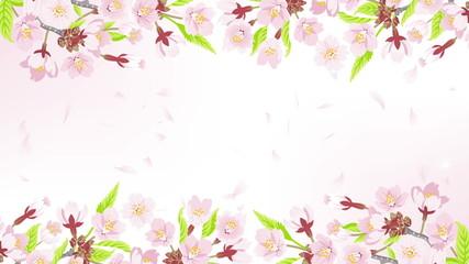 Cherry flower frame, falling petals
