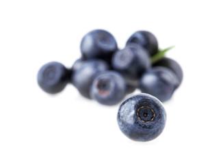 blueberry berry