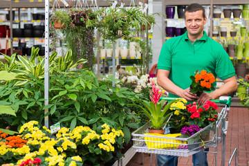 blumen für die gartenbepflanzung einkaufen