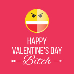 Smile Happy Valentines Day, a former bitch, funny joke