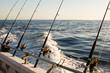 Fishing Charter - 76820190