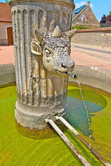 FONTAINE BASSIN YONNE