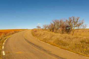 Curved rural road