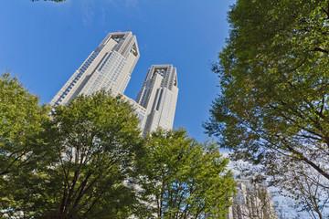 東京 都庁ビル 青空 緑