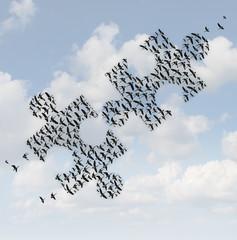 Flying Birds Puzzle