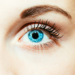 Bright Blue Eye Close Up