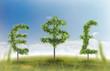 Money trees