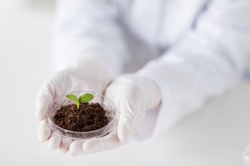 close up of scientist hands with plant and soil