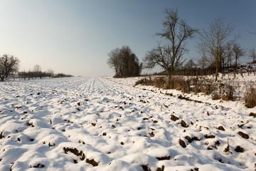 Neige sur la campagne