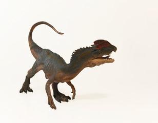 A Close Up of a Crested Dilophosaurus Dinosaur