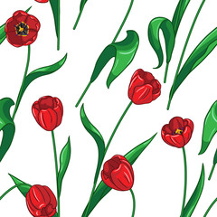 Seamless tulips pattern on white