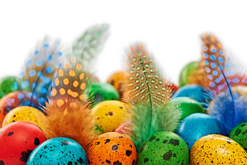 Easter quail Eggs painted beautiful multicolored background