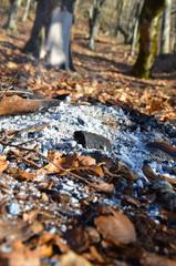 Dead Campfire