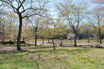 春風の河川敷