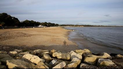 Mudeford beach near Christchurch Dorset England UK dog running