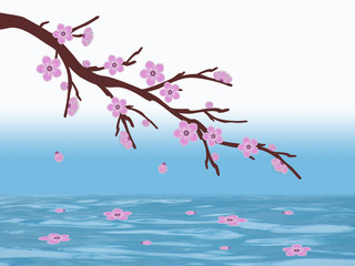 pink sakura cherry blossom branch water illustration