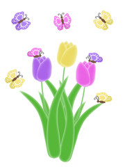 isolated butterfly and tulip spring and easter illustration
